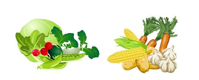 每周一营养丨如何挑选新鲜、健康的蔬菜